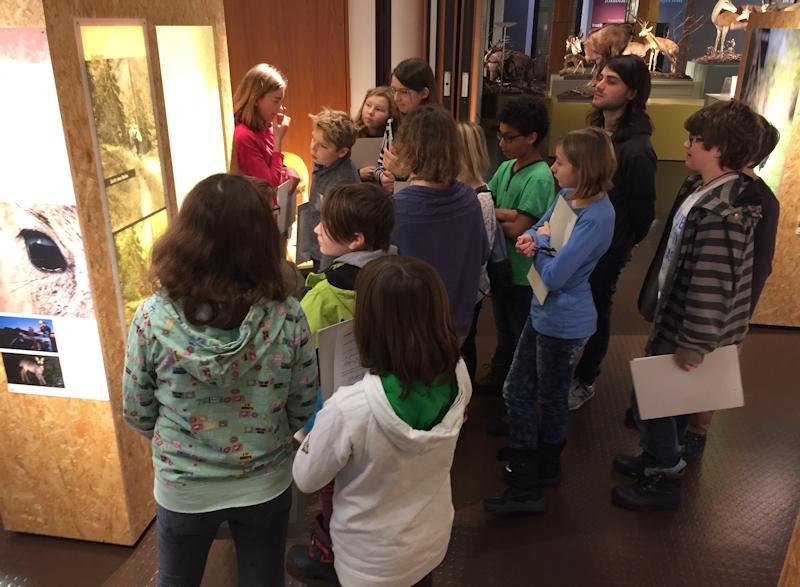 Museum Reh (14)