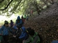 Naturpur (4)