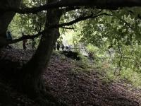 Naturpur (5)