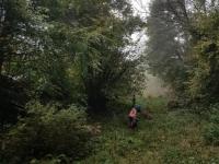 Naturpur (7)