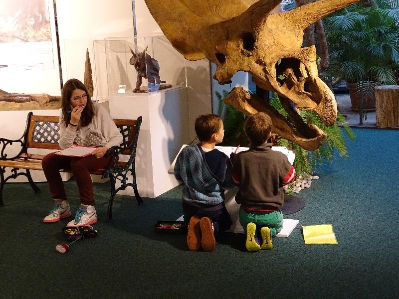 11 Sauriermuseum 2015