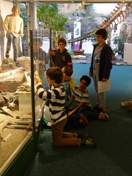 13 Sauriermuseum 2015